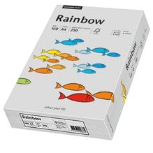 Rainbow Kopierpapier 88042813 A4 160g grau 250 Bl./Pack.