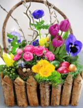 Bepflanzte Osterkörbchen
