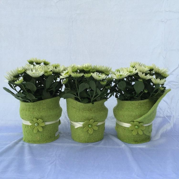 Blumen & Besonderes:Filz mit Chrysantheme