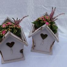 Blumen & Besonderes:Holz Vogelhaus