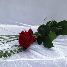Blumen & Besonderes:Strauß mit einer langstieligen Rose