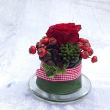 Blumen & Besonderes:Törtchen klein inkl. Teller ø 13,5 CM