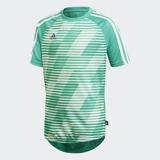Adidas Jungen T-Shirt Tango Graphic Trikot grün CV9912