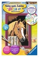 Ravensburger 296859 Malen nach Zahlen: Pferd im Stall