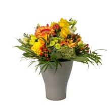 Blumenstrauß - Sonnenanbeter