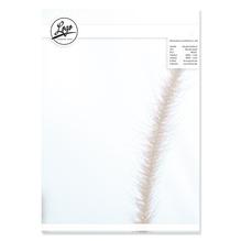 Briefpapier 500 Blatt
