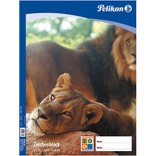 Pelikan Zeichenblock C2/10 137604 DIN A2 chlorfrei 10Blatt weiß