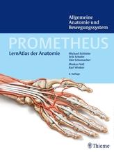 Allgemeine Anatomie und Bewegungssystem   Schünke, Michael; Schulte, Erik; Schumacher, Udo
