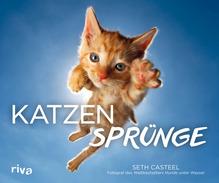 Katzensprünge | Casteel, Seth