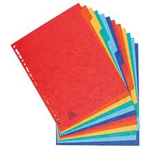 Exacompta Register XXL 2412E DIN A4 Manila-Karton 225g 12-tlg farbig