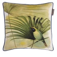 Kissen Kolibri 40 x 40 cm