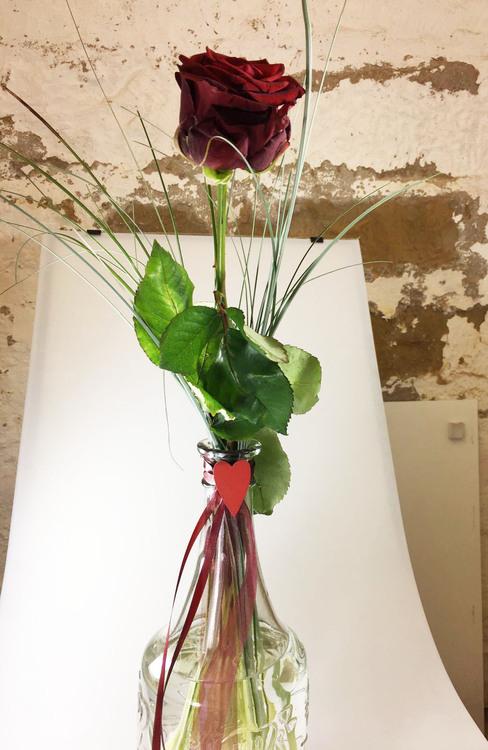 Blumen & Besonderes:Rose mit Glas