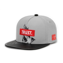 Cayler sons trust cap grey black leather