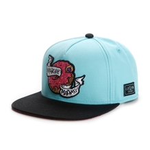 Cayler & Sons Snapback Cap Munchie Madness Mint