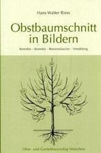 Obstbaumschnitt in Bildern   Riess, Hans W.