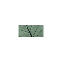 Willowblatt, skelettiert, SB-Btl. 8 Stück, 6 - 10 cm, d.grün