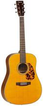 Tanglewood TW40 D AN E Dreadnought Akustik Gitarre