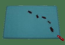 Dreckstückchen de luxe mit Aufdruck 'Krabbeltierchen'