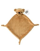 Nt6474 teddy