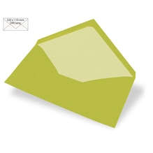 Kuvert DIN Lang, uni, FSC Mix Credit, 220x110mm, 90g/m2, Beutel 5Stück, lindgrün