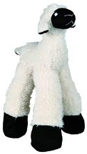 Schaf, langbeinig