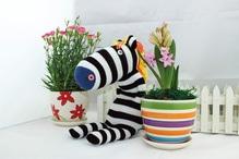 Socken Puppe zum selbst nähen - Zebra