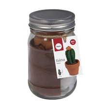 Bastelpackung: Kaktus, 5cm ø, 10cm, Glas 1Stück